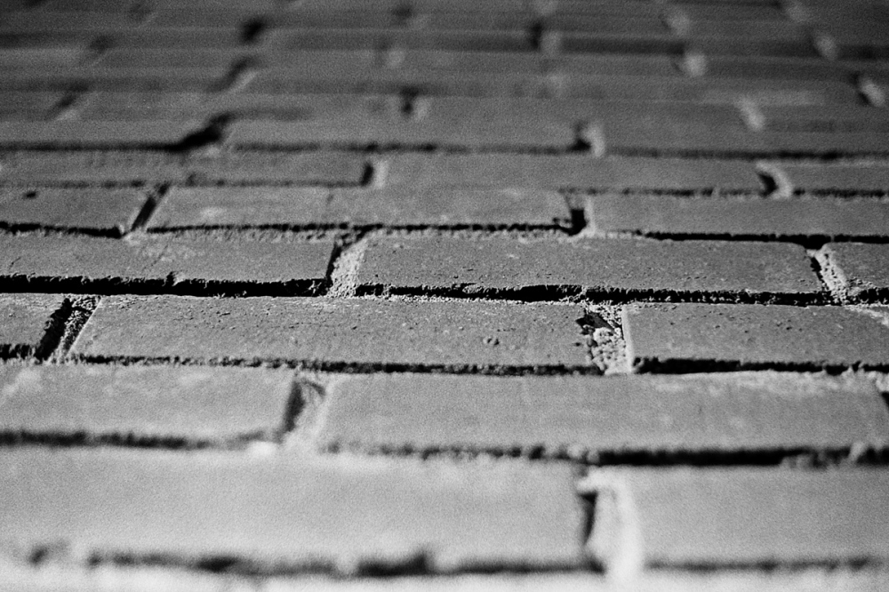 Bricks_Elan_7ne_T-Max_400